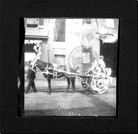 Parade - Horse Drawn Carriage
